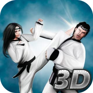 Karate Fighting Tiger Warrior 3D
