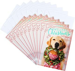 Hallmark Christmas Cards Pack, Puppy with Wreath (10 Cards with Envelopes)