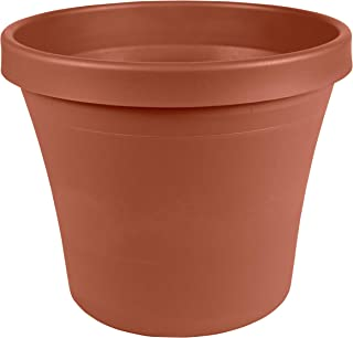 Best clay pot price Reviews