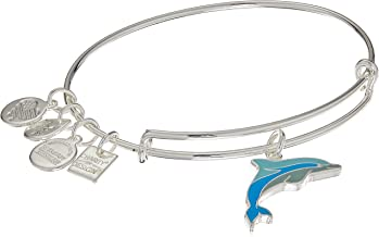Alex and Ani Charity by Design, Dolphin EWB, Bangle Bracelet