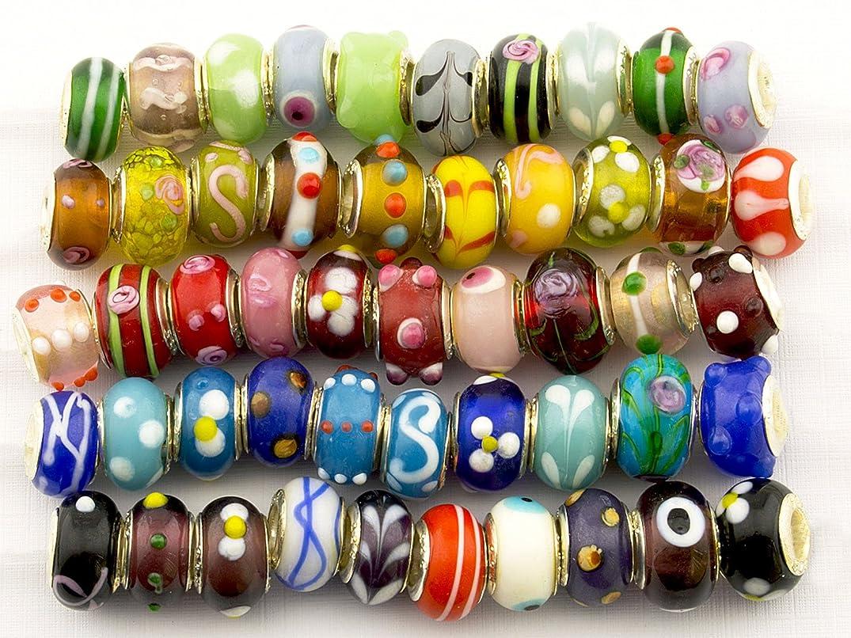 Summer-Ray 50pcs Mixed Lampwork Murano Glass Beads Fit European Charm Bracelet