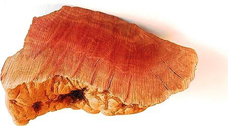 Barkworthies Root Chew | Amazon