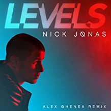 Levels (Alex Ghenea Remix)