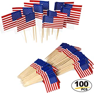 Anley US Flag Cupcakes Toppers - Vivid Double Sides Print, Smooth Solid Pick - Party Decoration Cocktail Fruit Stick Toothpicks (100 pcs)