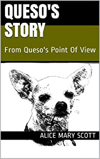 QUESO'S STORY: From Queso's Point Of View (English Edition)