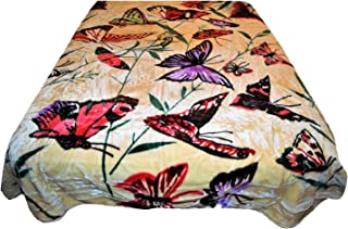 Best queen victoria butterfly Reviews