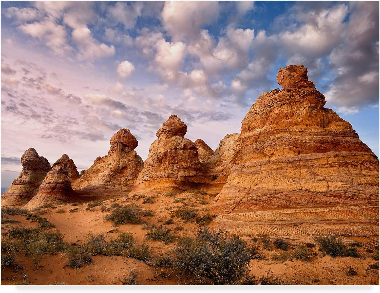Trademark Fine Art Arizona Peaks I by David Drost, 14x19