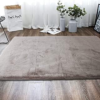 Freshmint Luxury Indoor Area Rug 3 x 5 Feet, Silky Smooth Ultra Soft Rabbit Fur Rugs Floor Mat Fluffy Carpet for Dining Room Bedroom Home Decor, Gray