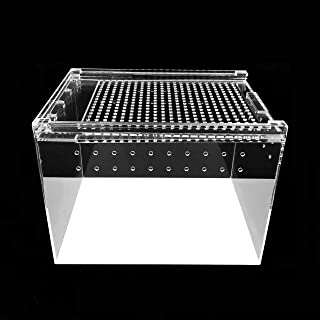 Herpcult Magnetic Acrylic 8x6x6 Inch Medium Flat/Long Enclosure Reptile Terrarium Cage Tank Tarantula Scorpion Sling Isopods Lizards Invertebrates Insects Mantis Snake Gecko Frog