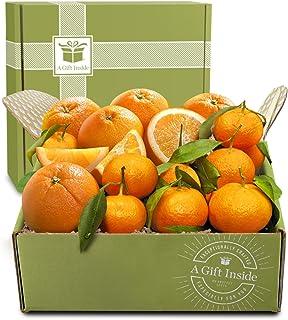 Holiday Citrus Duet Fruit Gift Box