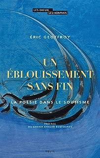 Un éblouissement sans fin. La poésie dans le soufisme (DIEUX HOMMES) (French Edition)