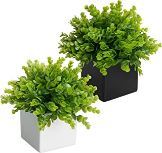 MyGift Artificial Plants in Black & White Square Ceramic Pots, Set of 2