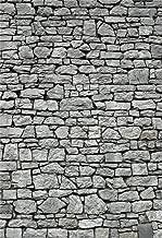 AOFOTO 6x8ft Grunge Gray Stone Wall Background Ancient Grey Uneven Cracked Rock Brick Wall Photography Backdrop Kid Adult Man Boy Portrait Vintage Photoshoot Studio Props Video Drape Wallpaper Drop