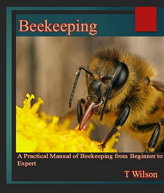 Beekeeping: A Practical Manual of Beekeeping from Beginner to Expert (English Edition)