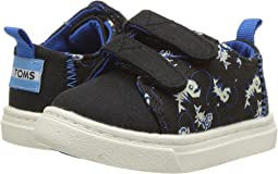TOMS Kids Lenny (Infant/Toddler/Little Kid)