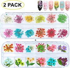 GOTONE 120pcs Dried Flowers 3D Nail Art Stickers Decoration DIY Preserved Real Flower Stickers Tips Manicure Decor Mixed Accessories,80pcs Starry+40pcs Five Flower with Leaves (2 Boxes)