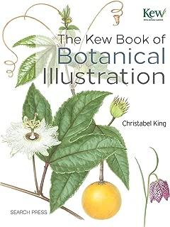 botanical illustration cactus