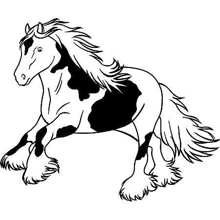 Der Pferdeshop De Xl Pferdeaufkleber Für Auto Oder Hänger Mit Wunschtext Tinker P56 25 Cm Auto