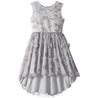 Nanette Lepore Kids Lurex Tulle High-Low Dress w/ 3D Flowers (Little Kids/Big Kids) (Silver) Girl