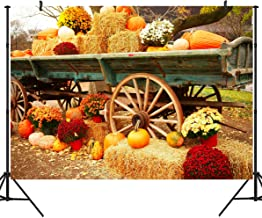 DULUDA 9X6FT Halloween Pumpkin Pictorial Cloth Backdrop Photography Background Studio Prop for Christmas WXL39B