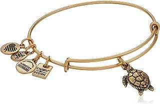 Alex and Ani Charity by Design Turtle Rafaelian Bangle Bracelet