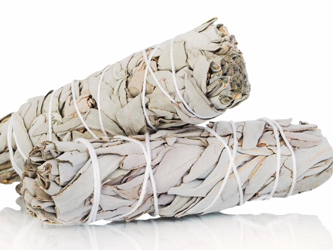拒否オリエント因子White Sage Smudge Sticks 10cm