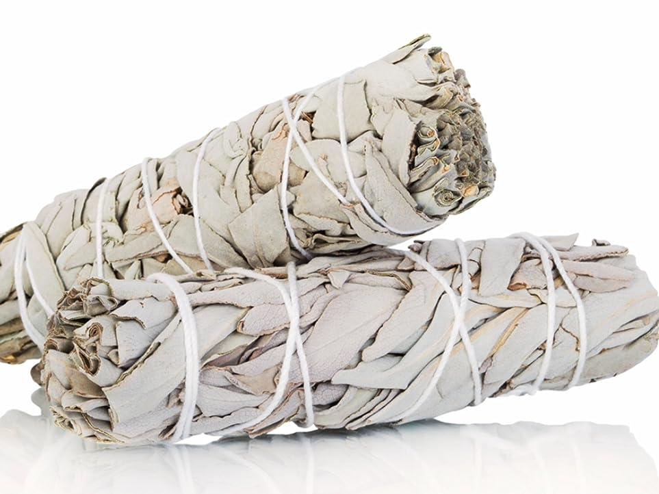 活発アルバム橋White Sage Smudge Sticks 10cm