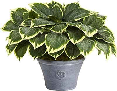 Nearly Natural 23in. Variegated Hosta Artificial Plant in Gray Planter, Green