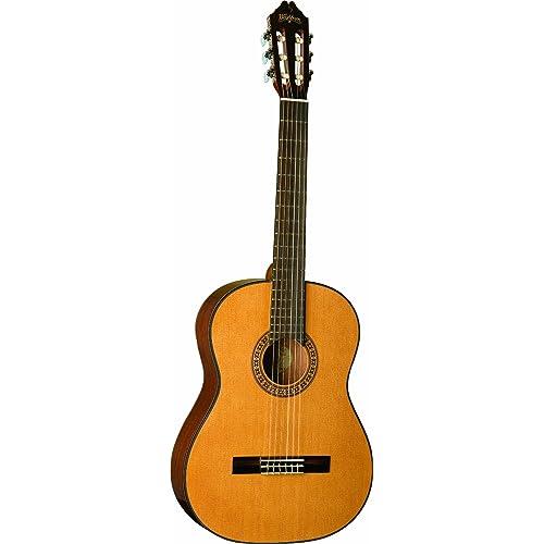 Washburn C40 Nylon String Classical Acoustic Guitar