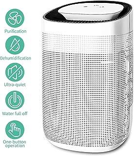 Honati Small Dehumidifier with Air Purifier,Ultra-quiet Mini Portable Bedroom & Office Kitchen Basement Dehumidifier 1000ml