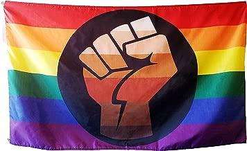 QPOC Pride Flag 3x5 Foot - LGBT+ Pride Flag with Power Fist, Inspired by Black Brown Philadelphia/Philly Pride Flag, Vivid Colors, Sleeve and Metal Grommet