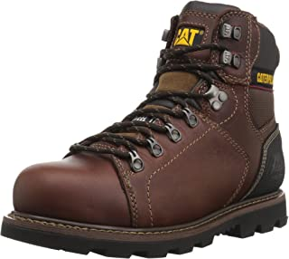 Men's Alaska 2.0 ST/Brown Industrial & Construction Shoe