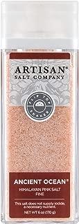 SaltWorks Ancient Ocean Himalayan Pink Salt, Fine, Artisan Shaker Jar, 6 Ounce