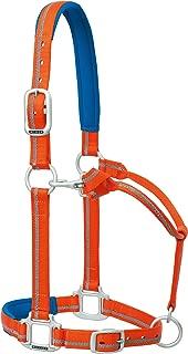 Weaver Leather Nylon Padded Reflective Adjustable Horse Halter, Large, Orange