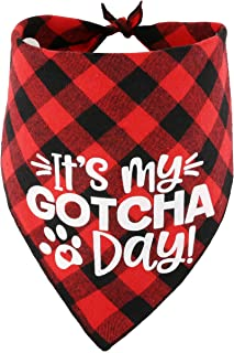 JPB Dog Birthday Bandana for Boy and Girl Dogs,Gotcha Day Pet Scarf,Dog Adoption Bandana