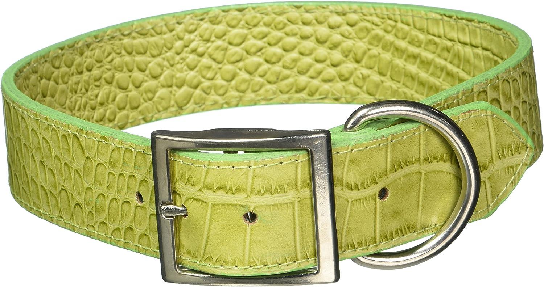 OmniPet 6169GR26 11 2 X 26  Croco Faux Crocodile Leather Collar, Green, XLarge