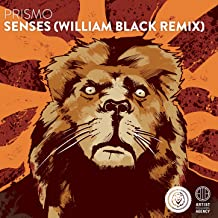 Senses (William Black Remix)