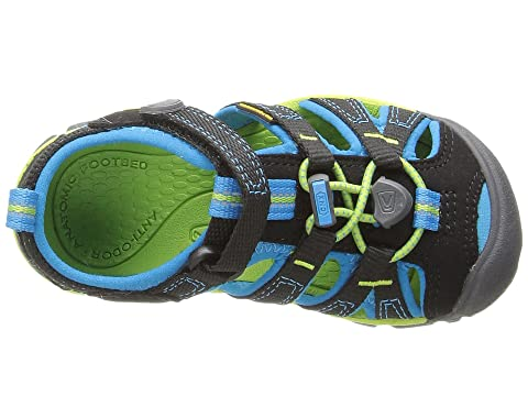 e8e45788804b Keen Kids Seacamp II CNX (Toddler Little Kid) at Zappos.com
