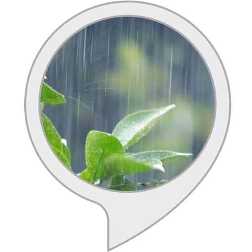 五月雨(さみだれ)の音