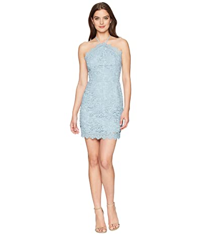 J.O.A. Halter Bodycon Dress (Dusty Shale) Women