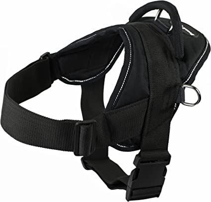 Dean and Tyler DT Dog Harness   Amazon