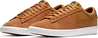 Nike Sb Zoom Blazer Low Gt Men's Skateboarding Shoes
