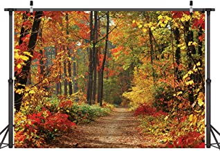 LYWYGG Autumn Scenery Deciduous Background 8x6ft Vinyl Deciduous Mountain Road Photography Backdrop Tree and Yellow Fall L...