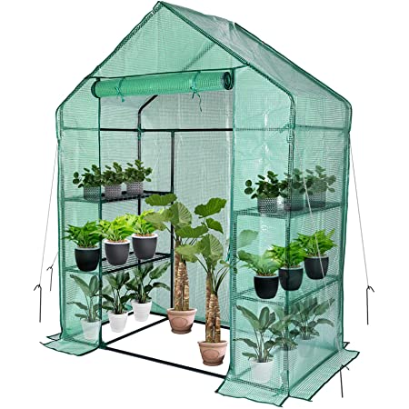 """Greenhouse,Outdoor Greenhouse,Portable Greenhouse with Anchors and Roll-up Zipper Door,Grow Plants Seedlings Herbs or Flowers(56""""×30""""×76"""")"""