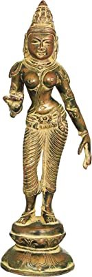 Brass Statue Individual Artist ZBA45 Exotic India Devi Parvati