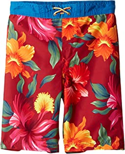 4af5b12828 Appaman kids allover print mid length swim trunks toddler little ...