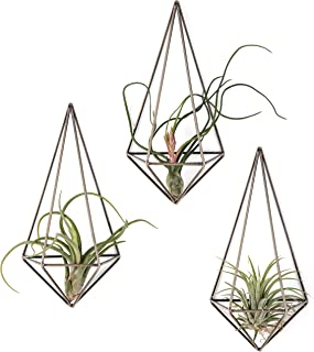 Mkono Wall Mounted Air Plant Holder Modern Geometric Planter Hanging Tillandisia Container Himmeli Home Decor, Bronze, 3 Packs