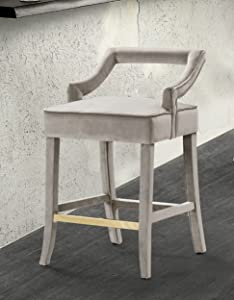 Iconic Home Chiara Counter Stool Chair Velvet Upholstered Half Back Design Gold Tone Footrest Bar Wood Frame Modern Contemporary, Taupe