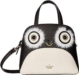 Dashing Beauty Penguin Small Lottie