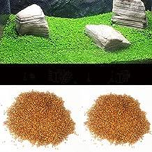 Corner Biz Aquarium - Aquarium Glossostigma Hemianthus Callitrichoides Seeds Water Grass Mini Leaf Live Plant Fish Tank Decoration Landscape Ornament